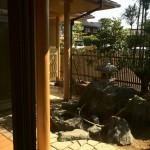 西条純和風新築 庭、濡れ縁、灯篭